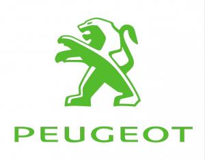 Peugeot Timingset Auto Werkzeug