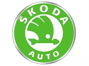 Skoda Timingset Auto Werkzeug