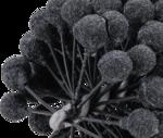 Honwerkzeug flexibel Kornung 180 75 - 77 mm