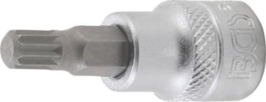 Bit-Einsatz Antrieb Innenvierkant 10 mm (3/8) Innenvielzahn (fur XZN)