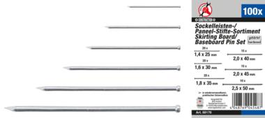 Sockelleisten- / Paneel-Stifte-Sortiment 100-tlg.
